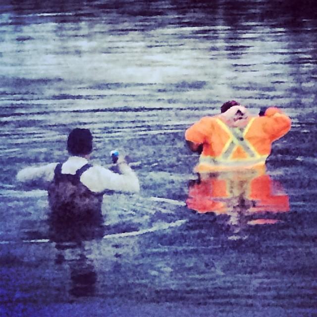 @tomdrich @rangerbob316 swimming. #swampdonkeys