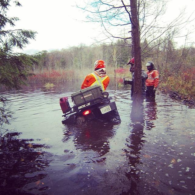 Crossing the beaver dam. @tomdrich #swampdonkeys