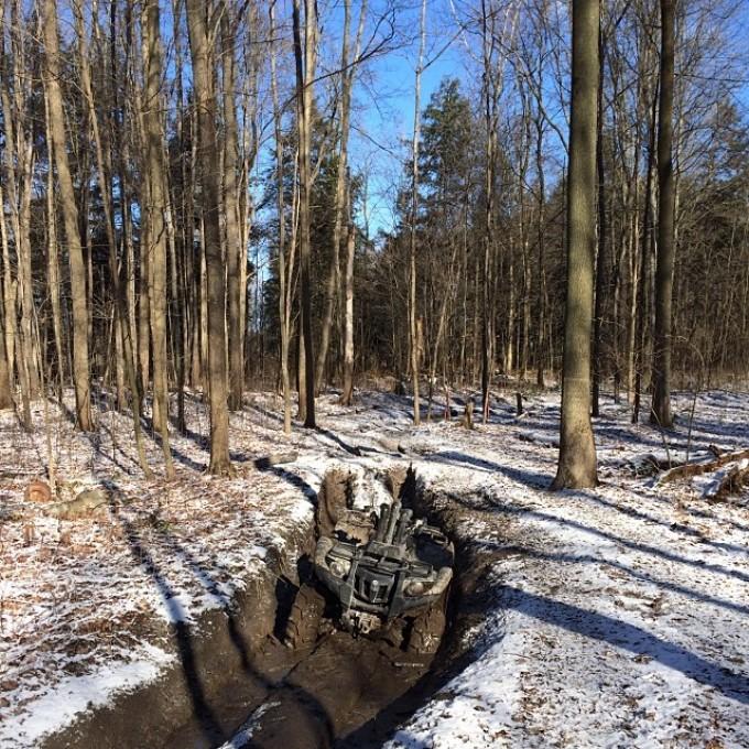 Nice winters day. Oh hey Grizz. #swampdonkeys