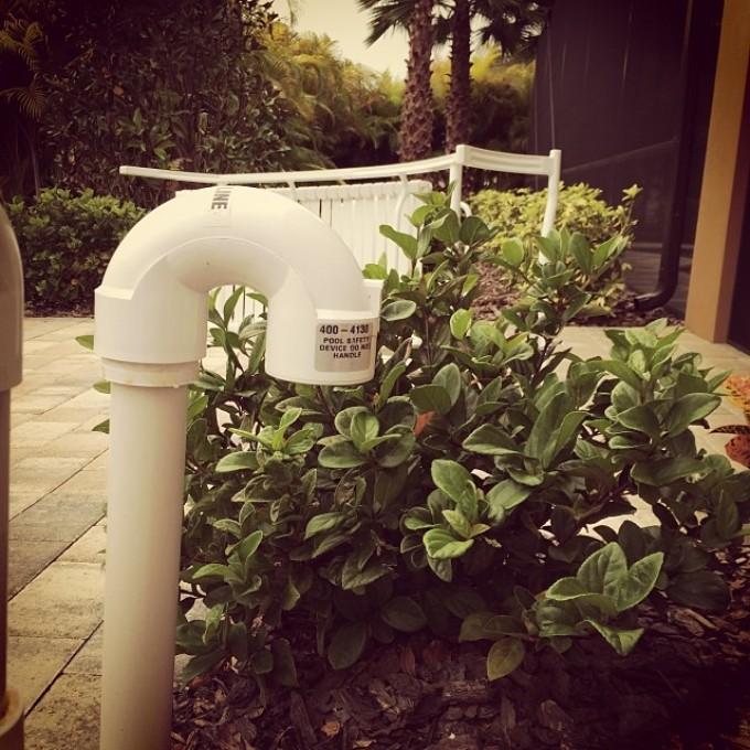 My garden has a snorkel. Does yours? #swampdonkeys